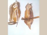 Nyári tábor festőosztály 014