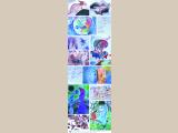 Festő osztály 002