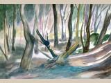 rajz-festő osztály - 2013 - nyár 12