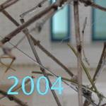 szabadisi 2004